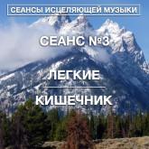 СЕАНС №3 ЛЕГКИЕ/КИШЕЧНИК