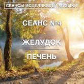 СЕАНС №4 ЖЕЛУДОК/ПЕЧЕНЬ