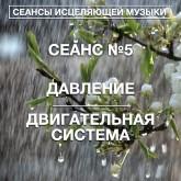 СЕАНС №5 НОРМАЛИЗАЦИЯ ДАВЛЕНИЯ/ДВИГАТЕЛЬНАЯ СИСТЕМА